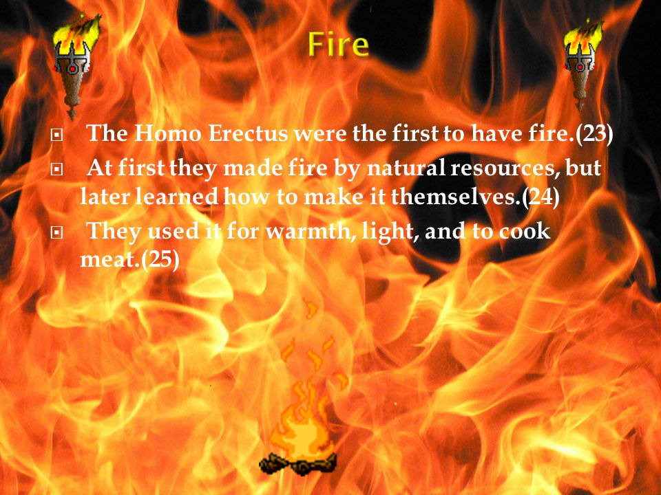 Fire The Homo Erectus were the first to have fire.(23)