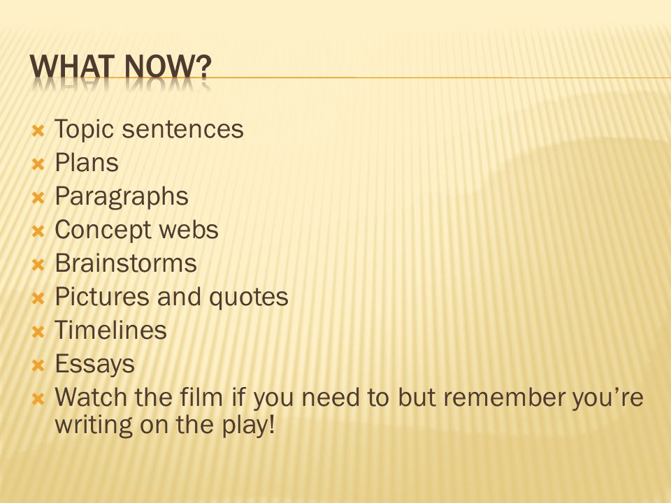 What now Topic sentences Plans Paragraphs Concept webs Brainstorms