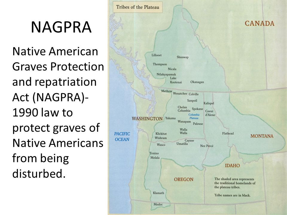 NAGPRA Native American Graves Protection and repatriation Act (NAGPRA)- 1990 law to protect graves of Native Americans from being disturbed.