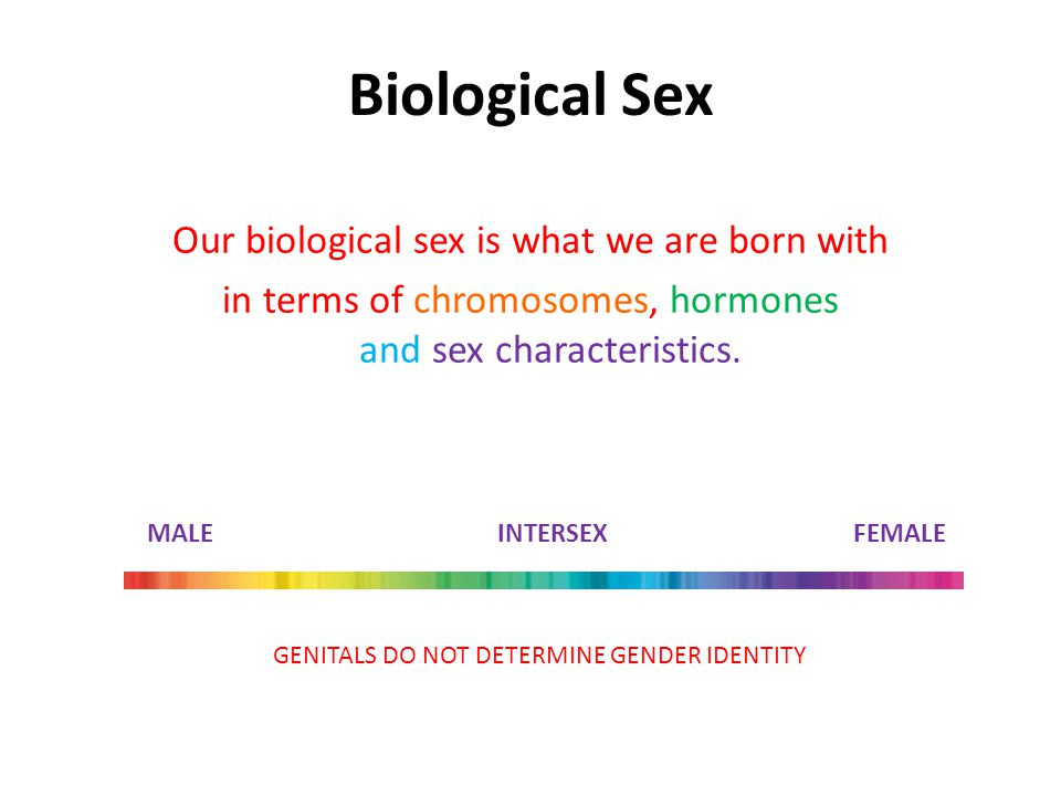 Biological Sex Our biological sex is what we are born with