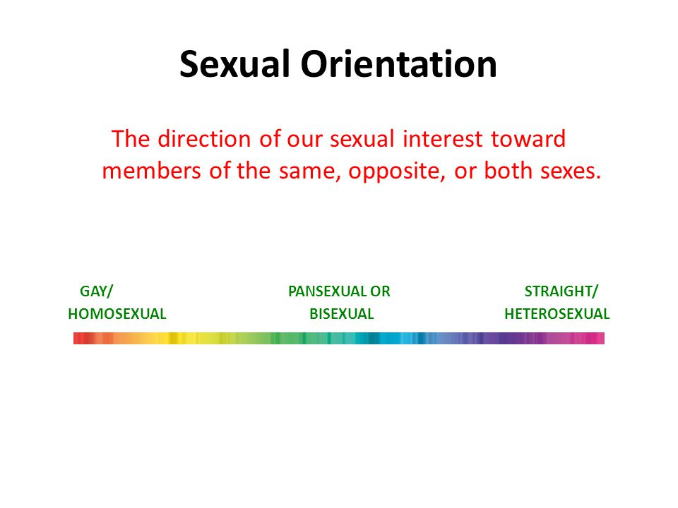 GAY/ PANSEXUAL OR STRAIGHT/ HOMOSEXUAL BISEXUAL HETEROSEXUAL