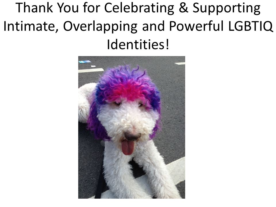 Thank You for Celebrating & Supporting Intimate, Overlapping and Powerful LGBTIQ Identities!