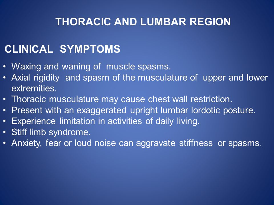 THORACIC AND LUMBAR REGION