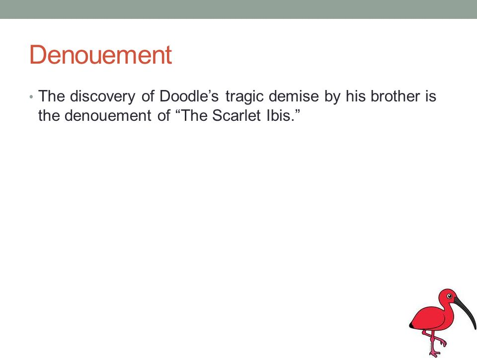 Denouement The discovery of Doodle's tragic demise by his brother is the denouement of The Scarlet Ibis.