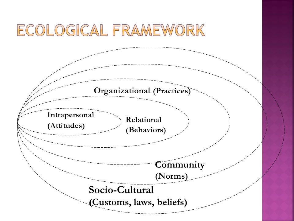 Ecological Framework Socio-Cultural Community (Customs, laws, beliefs)