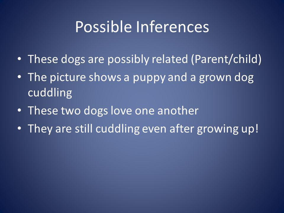 Possible Inferences These dogs are possibly related (Parent/child)