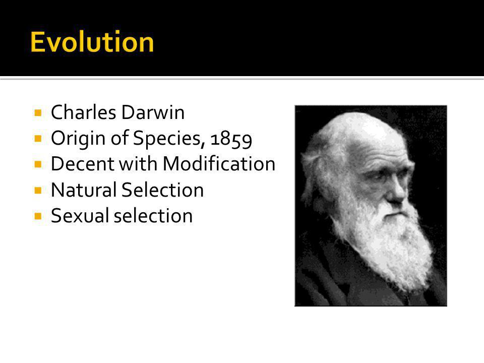 Evolution Charles Darwin Origin of Species, 1859