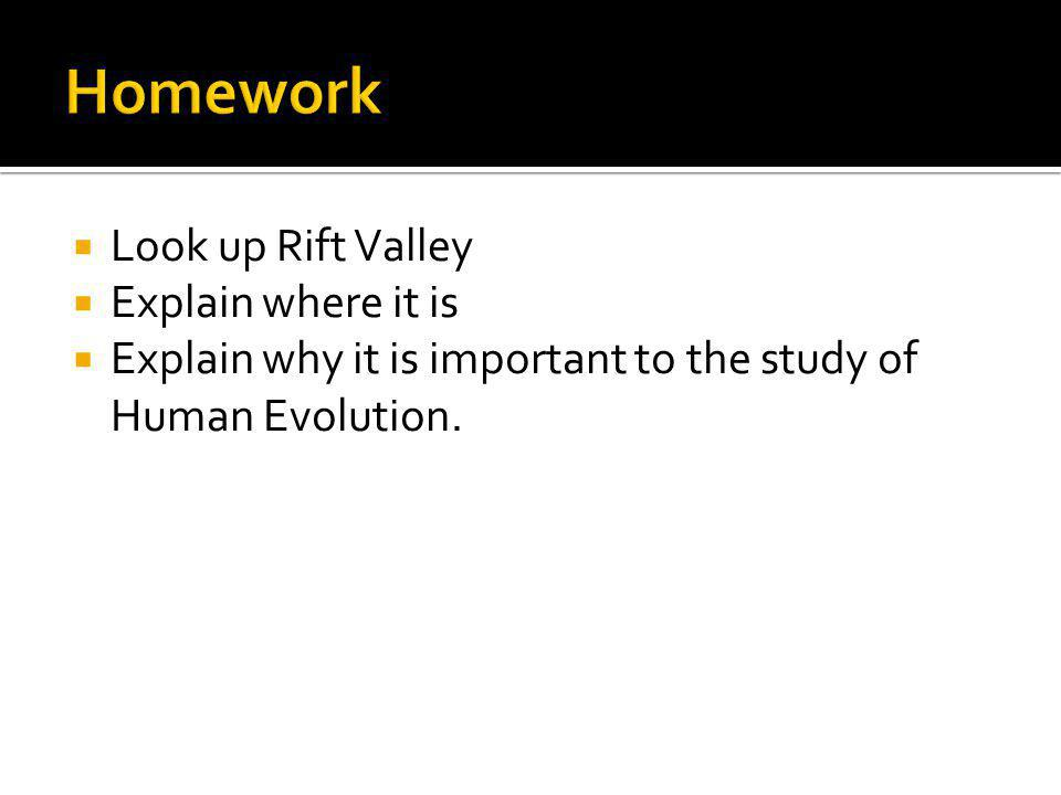 Homework Look up Rift Valley Explain where it is