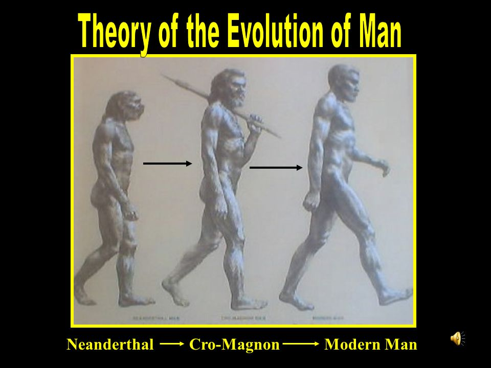 Theory of the Evolution of Man