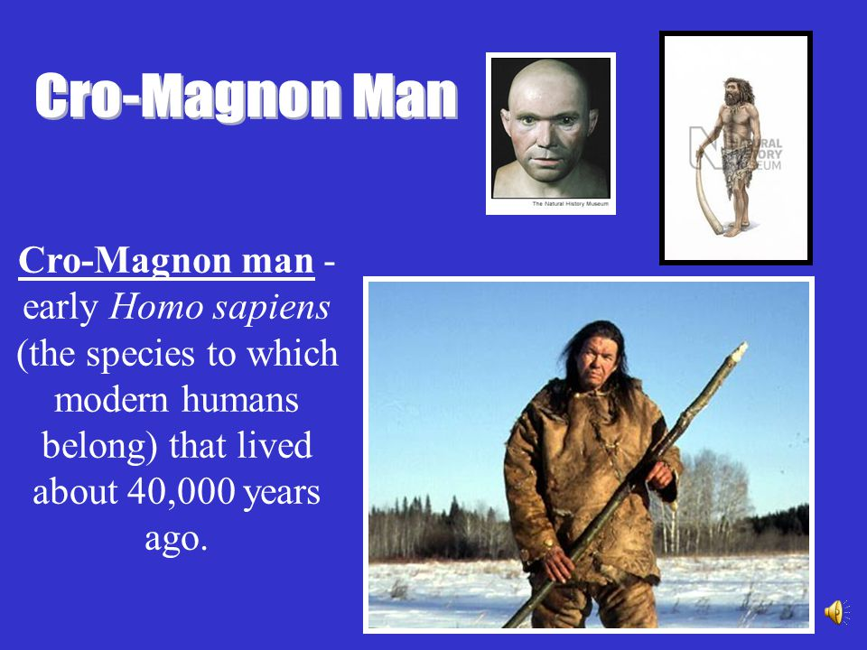 Cro-Magnon Man Cro-Magnon man -early Homo sapiens (the species to which modern humans belong) that lived about 40,000 years ago.