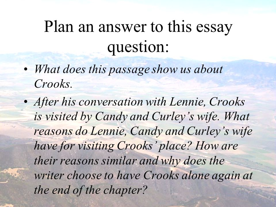crooks essay question Suggested essay topics sample a+ essay crooks is a lively  of mice and men (sparknotes literature guide series).