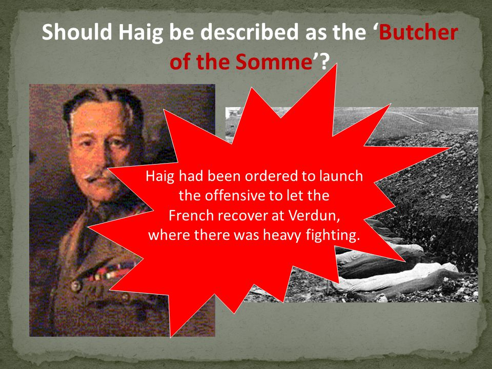 Should Haig be described as the 'Butcher of the Somme'