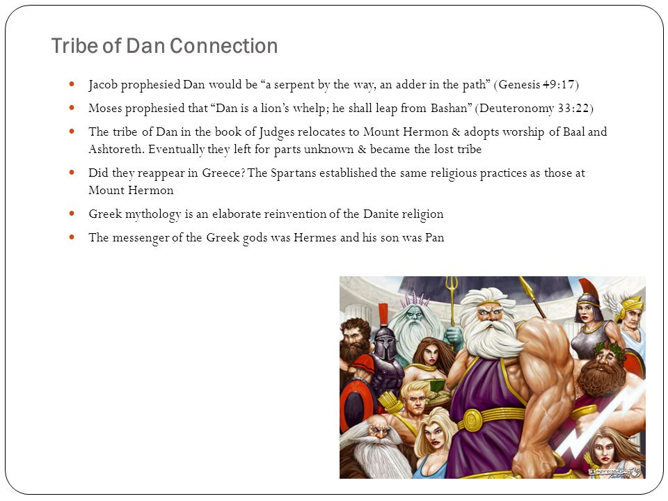 Tribe of Dan Connection