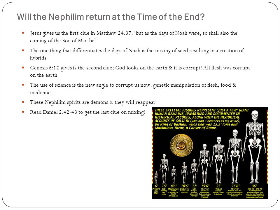 Will the Nephilim return at the Time of the End