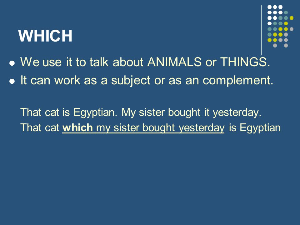 WHICH We use it to talk about ANIMALS or THINGS.