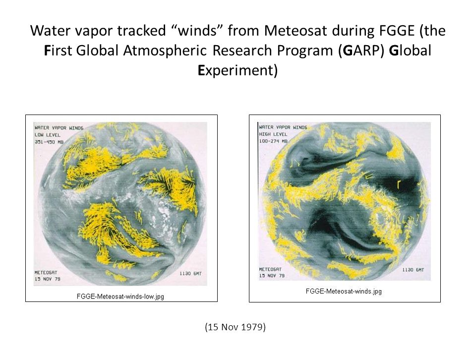 Water vapor tracked winds from Meteosat during FGGE (the First Global Atmospheric Research Program (GARP) Global Experiment)