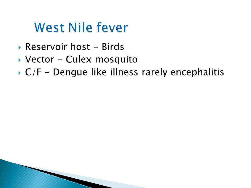 West Nile fever Reservoir host - Birds Vector - Culex mosquito