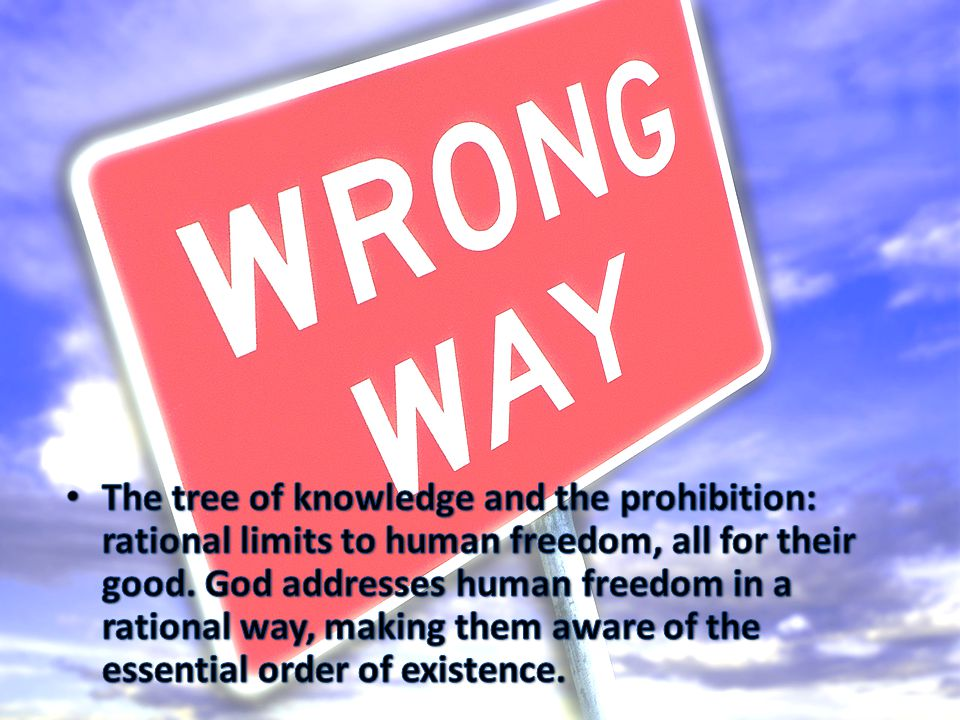 The tree of knowledge and the prohibition: rational limits to human freedom, all for their good.