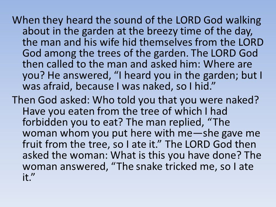 When they heard the sound of the LORD God walking about in the garden at the breezy time of the day, the man and his wife hid themselves from the LORD God among the trees of the garden.
