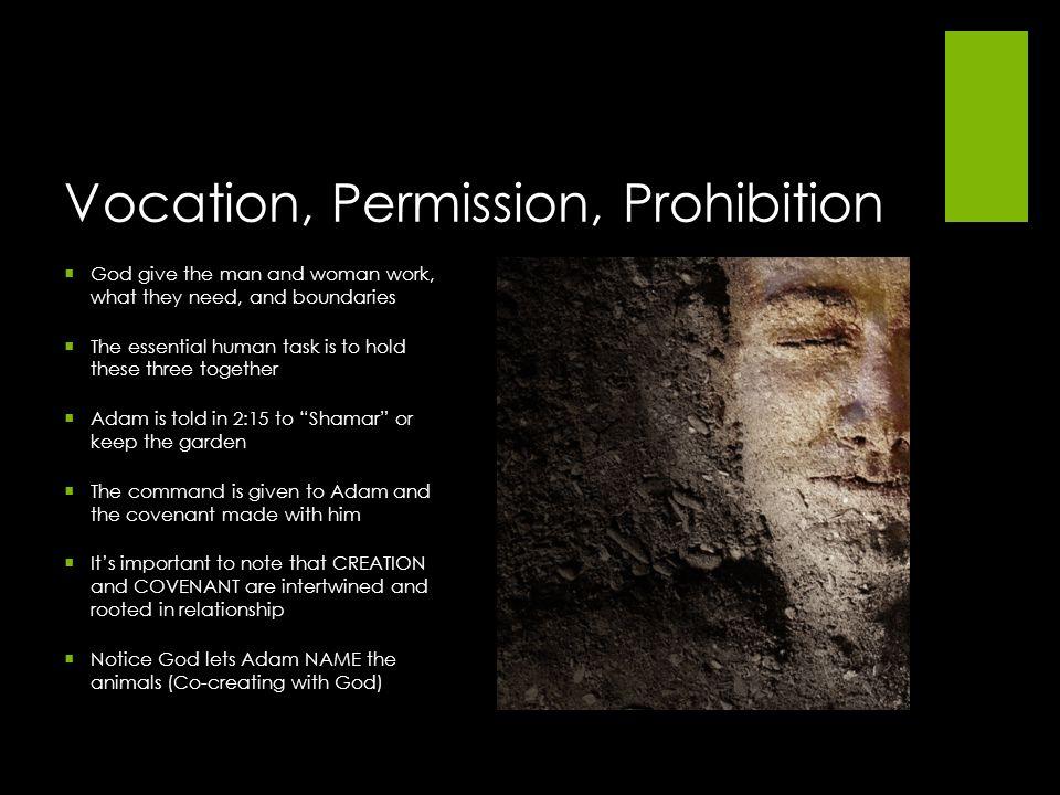 Vocation, Permission, Prohibition
