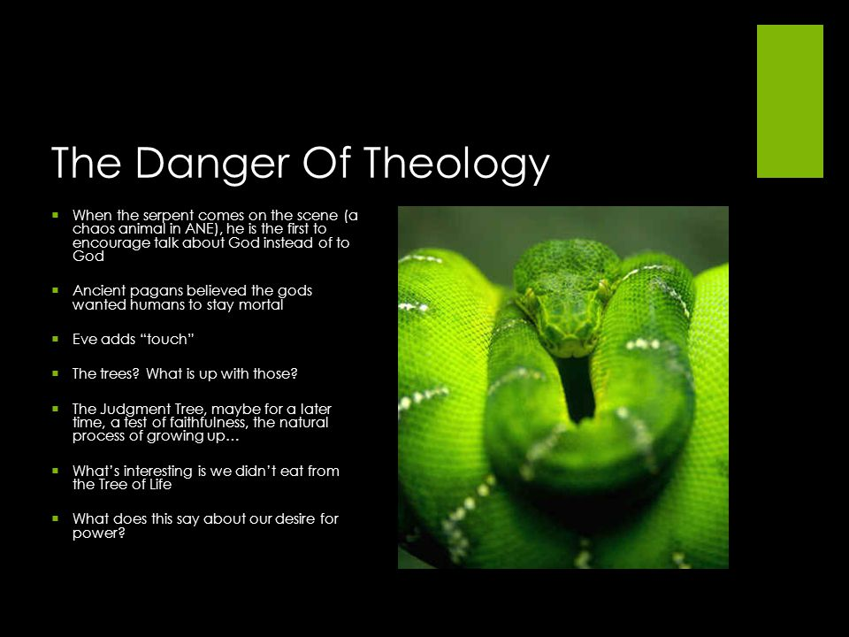 The Danger Of Theology When the serpent comes on the scene (a chaos animal in ANE), he is the first to encourage talk about God instead of to God.