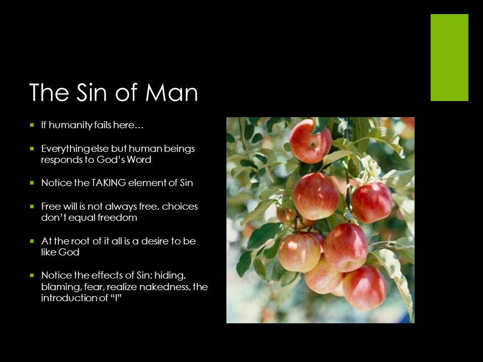 The Sin of Man If humanity fails here…
