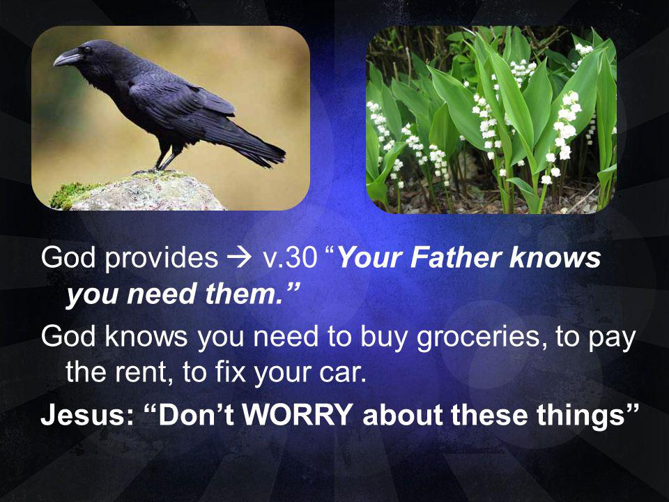 God provides  v. 30 Your Father knows you need them