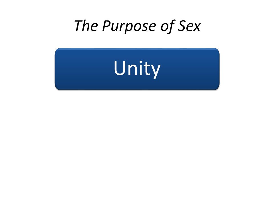 The Purpose of Sex Unity