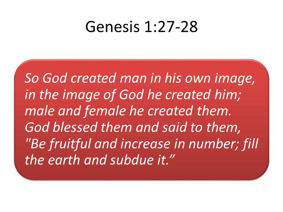 Genesis 1:27-28