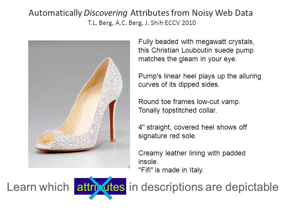 Learn which terms in descriptions are depictable attributes