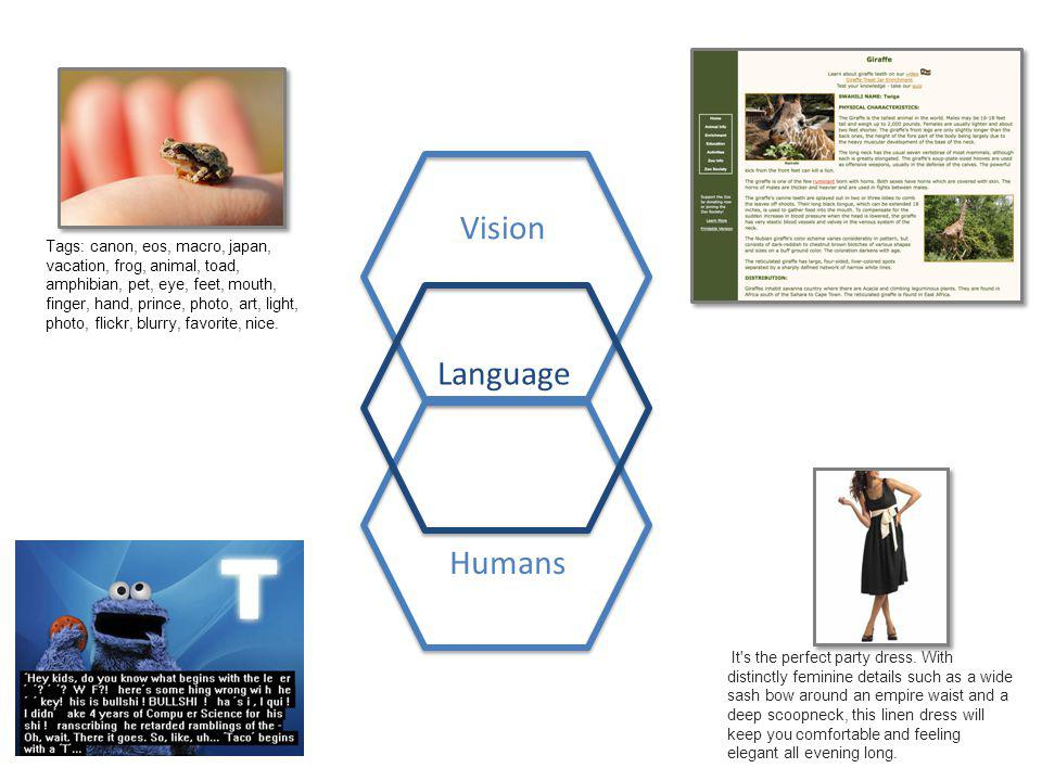 Vision Language Humans