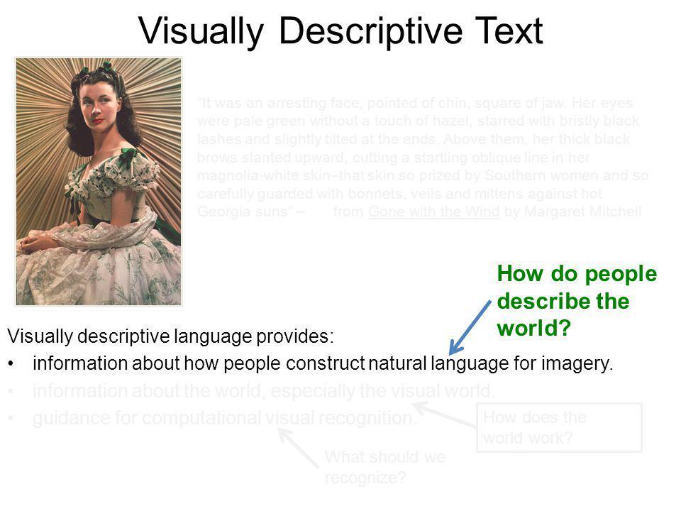 Visually Descriptive Text