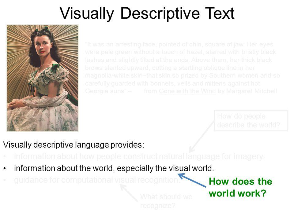 Visually Descriptive Text