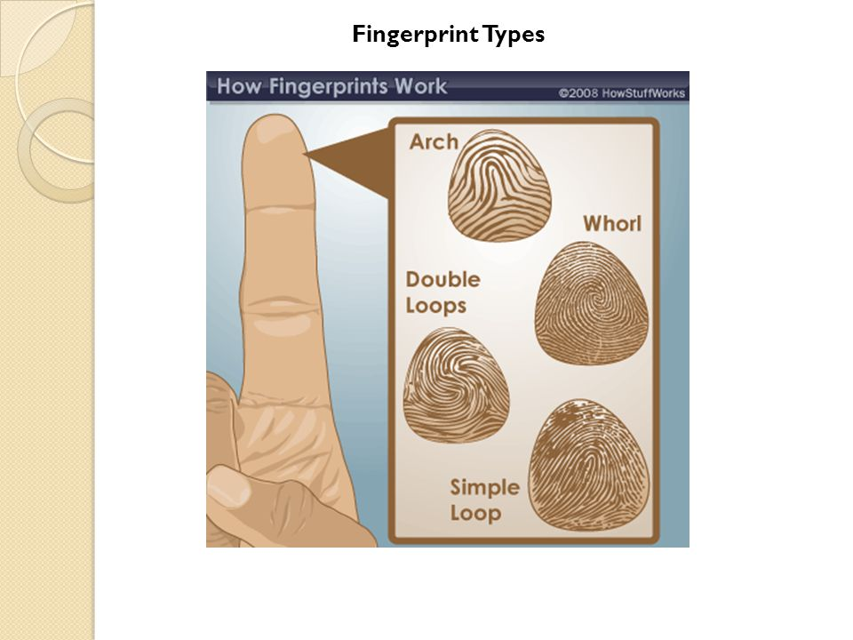 Fingerprint Types