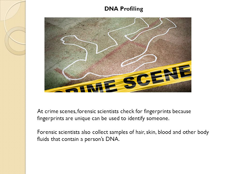 DNA Profiling At crime scenes, forensic scientists check for fingerprints because fingerprints are unique can be used to identify someone.