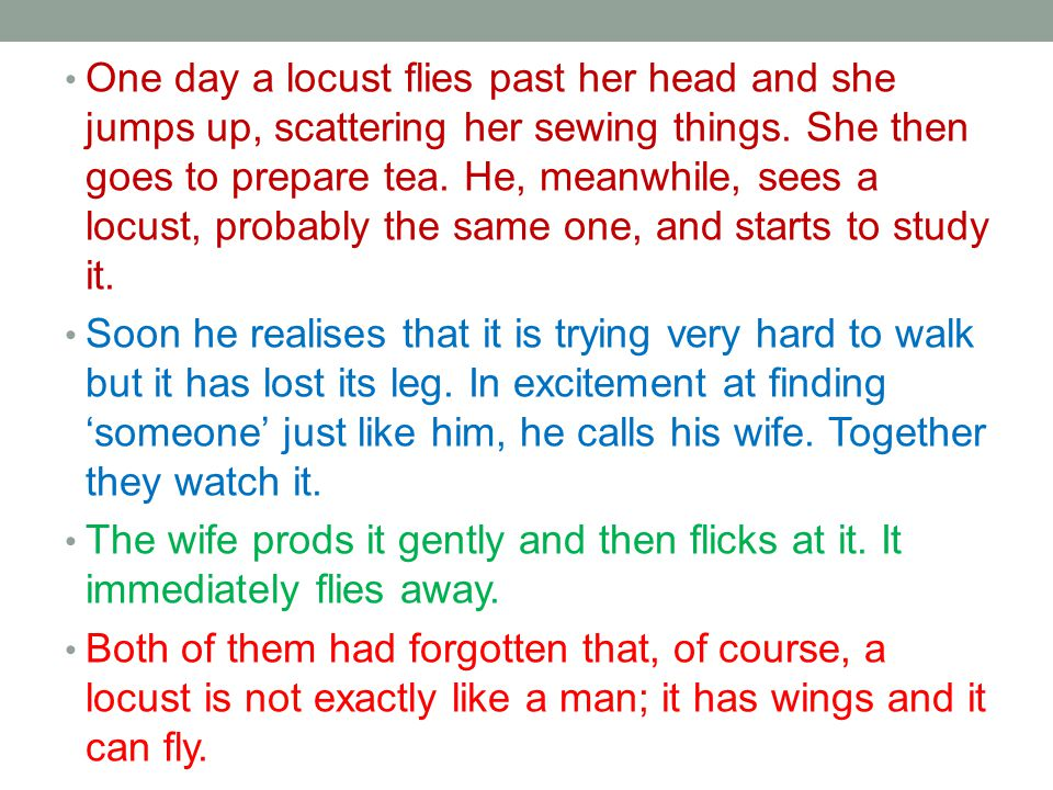 One day a locust flies past her head and she jumps up, scattering her sewing things. She then goes to prepare tea. He, meanwhile, sees a locust, probably the same one, and starts to study it.