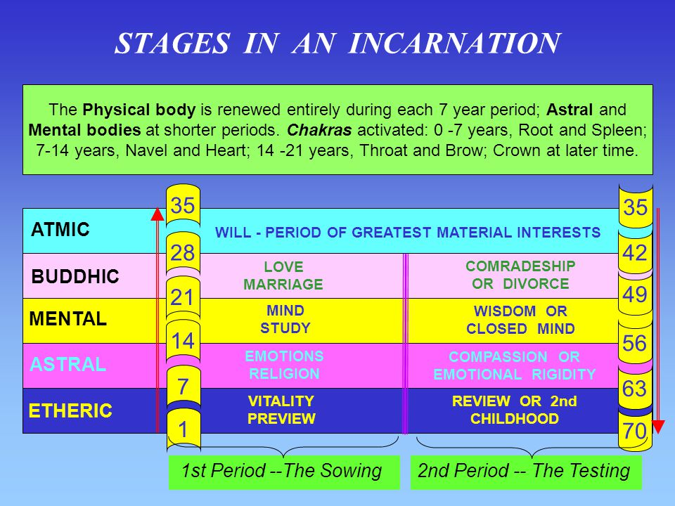STAGES IN AN INCARNATION