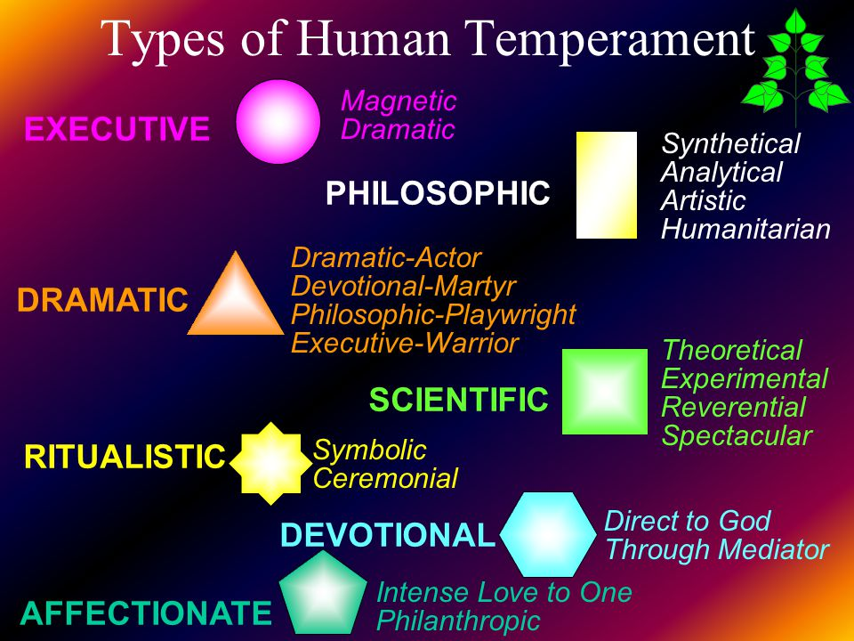 Types of Human Temperament