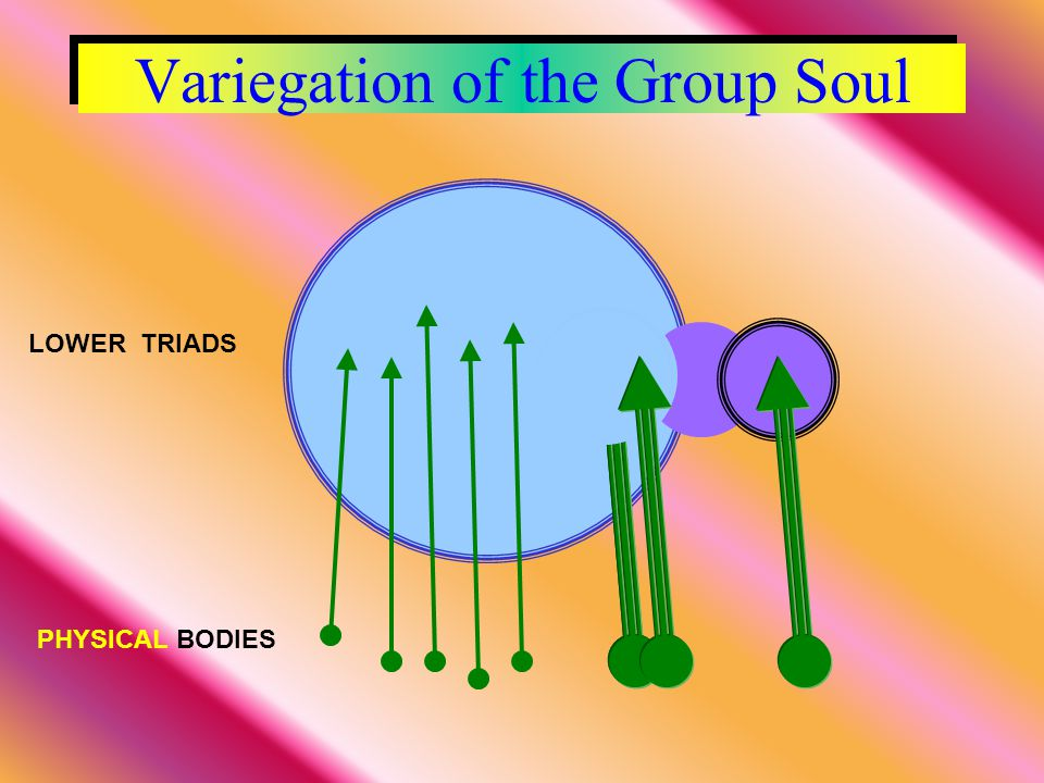 Variegation of the Group Soul