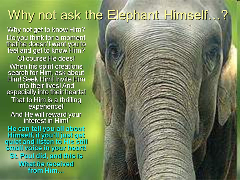 Why not ask the Elephant Himself…