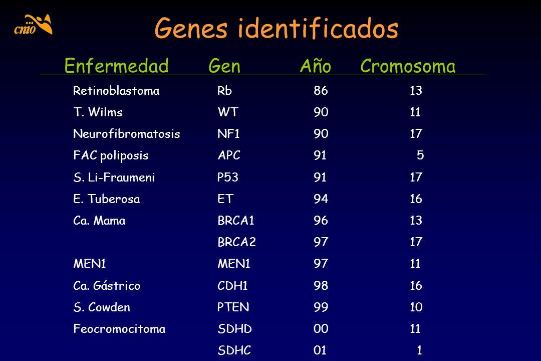 Genes identificados Enfermedad Gen Año Cromosoma