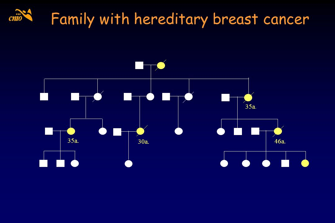 Family with hereditary breast cancer