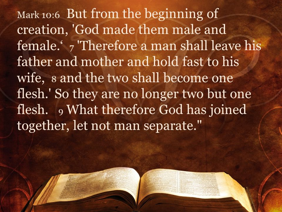 Mark 10:6 But from the beginning of creation, God made them male and female.' 7 Therefore a man shall leave his father and mother and hold fast to his wife, 8 and the two shall become one flesh. So they are no longer two but one flesh.