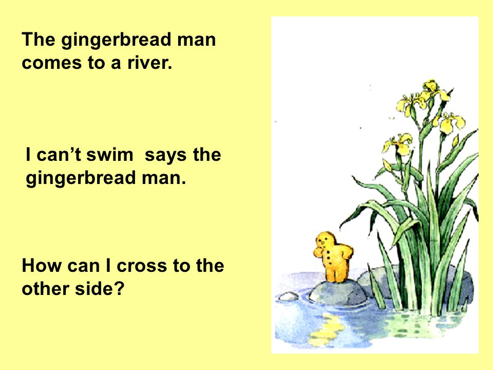 The gingerbread man comes to a river.