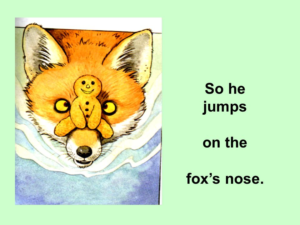 So he jumps on the fox's nose.