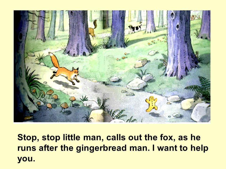 Stop, stop little man, calls out the fox, as he runs after the gingerbread man. I want to help you.