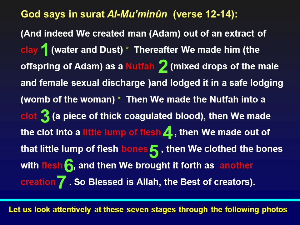 1 2 3 4 5 6 7 God says in surat Al-Mu'minûn (verse 12-14):
