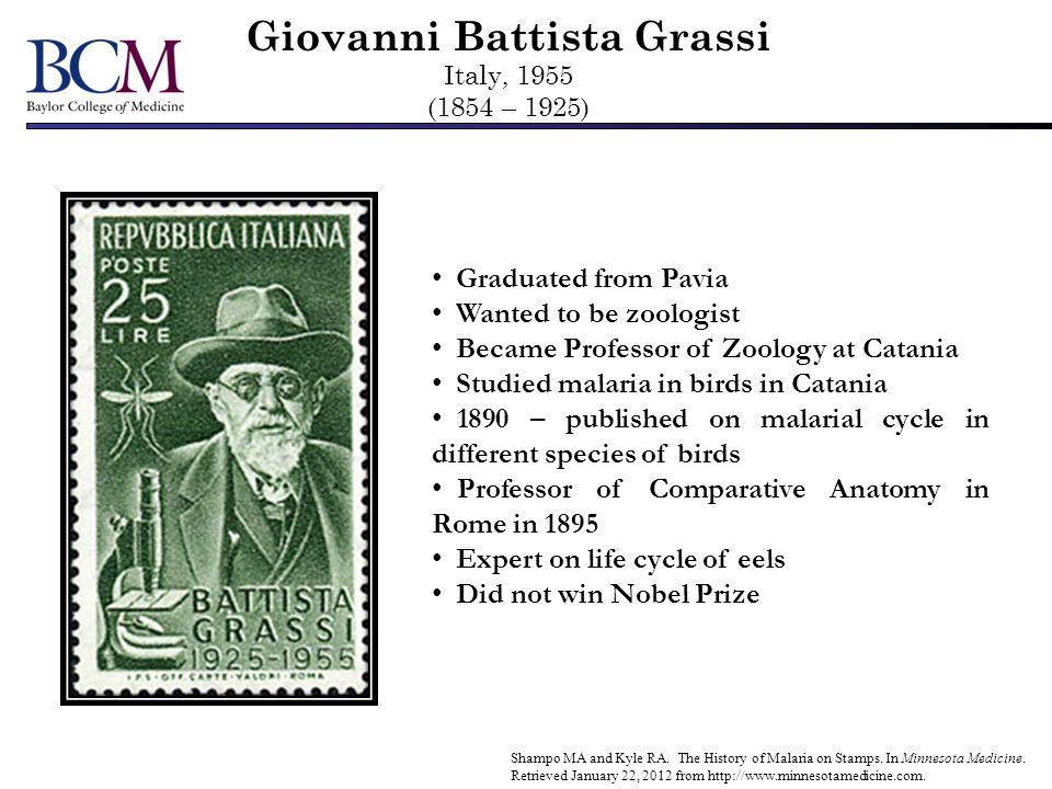 Giovanni Battista Grassi Italy, 1955 (1854 – 1925)