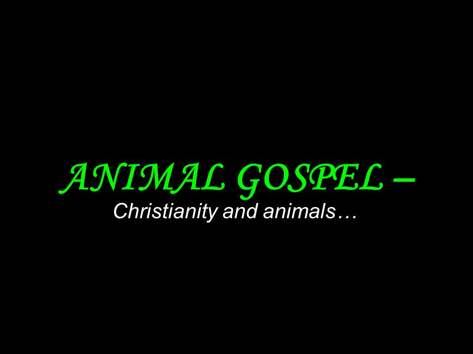 Christianity and animals…