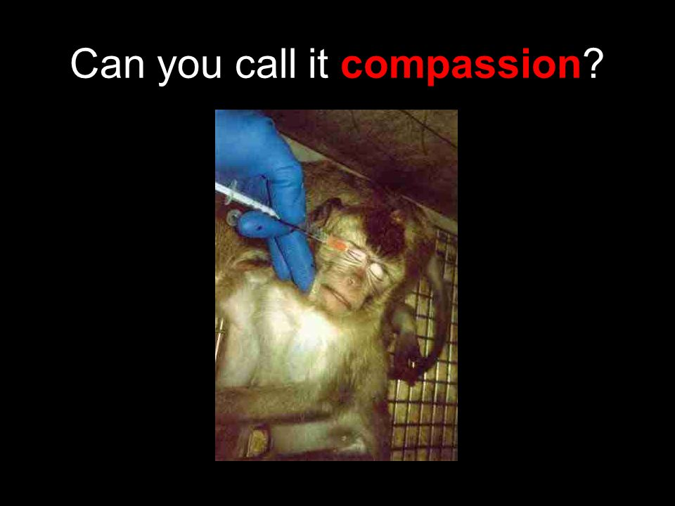 Can you call it compassion